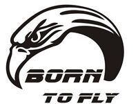 BORN TO FLY PARAGLIDING PILOT EAGLE SPORT Decals Stickers Emblem Vinyl Die Cut