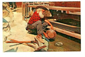 Postcard Knott's Berry Farm Prospector Panning Gold in Ghost Town Stream. D3