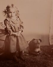 ANTIQUE VICTORIAN ANGEL GIRL CUTE DOG POOCH FLORAL STILL LIFE CABINET CARD PHOTO