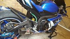 SUZUKI GSX-R 600/750 2006-2010 K8 Carbon Fiber Swingarm Covers Protectors Guards