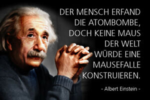 Albert Einstein Spruch 14 Blechschild Schild gewölbt Metal Tin Sign 20 x 30 cm