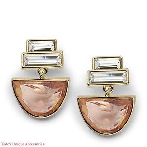 $44 Fossil Brand Half-Round Gold-tone Drop Earrings JA6659710 W Pink Glass Stone