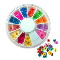 CH 36/60Pcs 3D Flower Nail Art Sticker Dried DIY Tips Acrylic Decoration Wheel