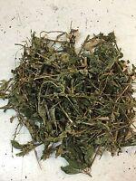 Jamaican Guinea Hen Weed 100% Organic Sun Dried 16oz / 1lbs