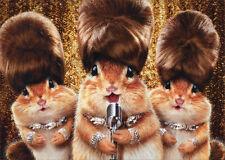 Chipmunk Singing Group - Funny Birthday Card - Greeting Card by Avanti Press