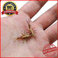 Artificial Stonefly Nymph Insect Model Fishing Fly Plastic Material Bait