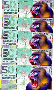 LOT Kamberra, POLYMER, 5 x 50 Numismas, 2016 China Lunar Year, UNC > Monkey