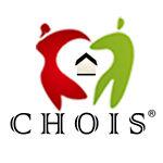 ChoisStore