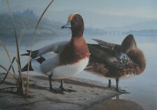 Daniel Smith 1991  UK FIRST OF NATION DUCK STAMP PRINT  Signed 1711/6000  #45
