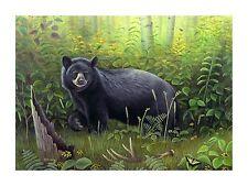 """Morning Stroll"" Black Bear 28x20 Canvas Print by Robert Metropulos"