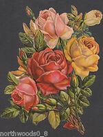 FLORAL BOTANICAL SPRING ROSES GIRL PINK CUTOUT  COLLAGE PAPER SCRAP EF GERMAN