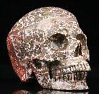 "Huge 5.0"" Leopard Skin Jasper Carved Crystal Skull, Realistic, Crystal Healing"
