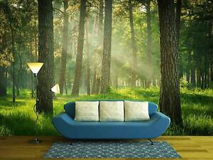 Wall26 - Green Forest with Sunshine - Wall Mural Home Decor - 100x144 inches