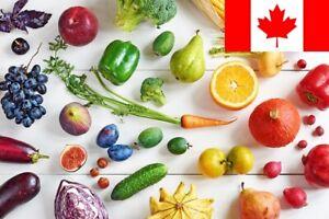 19 Types - Premium Organic Vegetable SEEDS - 100 Seeds - Microgreens Herbs Salad