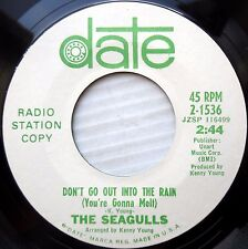 Seagulls Poprock 45promo Don'T Go Out Into The Rain Hitting Moon Sling Shot F602