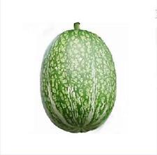 50 pcs Cucurbita Ficifolia Seeds Cucumber Rootstock Enhance Disease Resistance