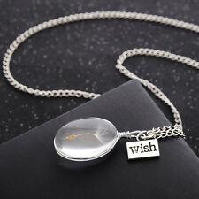 Silber Medaillon Amulett Talisman Medallion Glücksbringer Glas Echt Pusteblume