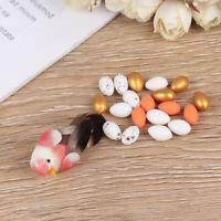 Cute micro landscape garden DIY materials miniature fairy garden little bird~GQ