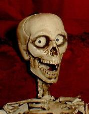 "Haunted Skeleton ""EYES FOLLOW YOU"" Halloween prop doll  figure curiosity"