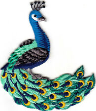 Cute Peacock Peafowl Colourful Embroidered Iron on Sew on Patch #1734