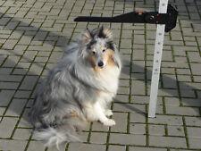Messlatte NEU für Ponys, Hunde, Schaafe, Ziegen  Aluminium  mit Wasserwaage
