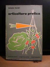 Antonio Turchi, ORTICOLTURA PRATICA, edizioni agricole Bologna, 1962.