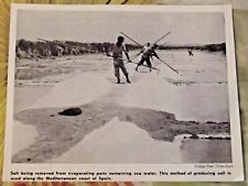 1962 Espagne Salt Being removed from evaporating pans containing sea water