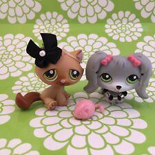 Littlest Pet Shop Grey Maltese Dog � 193 & Brown Tabby Cat � 194- Pet Pairs