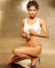 Halle Berry Actor Star Art Print poster (21x18inch)Decor 02