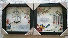 """Pair of Wall Art Print - Bird, Bird Cage Flower, Glass Cvr & Framed, 8.5"""" Sq x 2"""