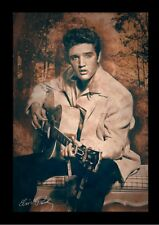 ELVIS PRESLEY TUPELO TAWN 13x19 FRAMED GELCOAT POSTER MUSIC LEGEND ICON GUITAR!!