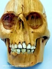 More details for large masonic memento mori hand carved wooden skull with bovine bone teeth (a)