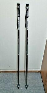 BRAND NEW Adult Ski Poles Masters 110 cm Winter Fun Snow Outdoor
