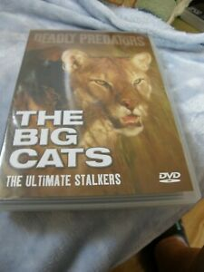 THE BIG CATS - THE ULTIMATE STALKERS - DEADLY PREDATORS -  - VGC - 0STD POST
