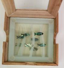 Smashing glass fish coasters wood display box