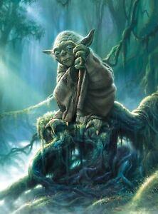 Buffalo Games - Star Wars - Fine Art Collection - Yoda - 1000 Piece Jigsaw Puzzl