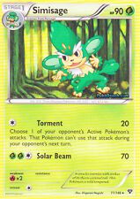 SIMISAGE 11/146 - XY POKEMON RARE CARD - IN STOCK NOW!