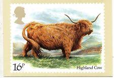 Gran Bretaña Ganado Bovino postal del año 1984 (CY-236)