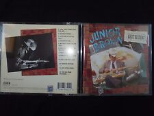 CD JUNIOR BROWN / GUIT WITH IT /