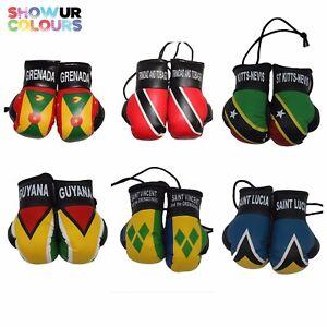 Trinidad / St Lucia/ St Vincent / Guyana /St. Kitts / Grenada Mini Boxing Gloves