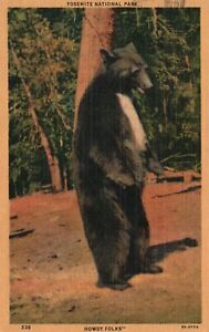 Vintage Postcard 1953 Yosemite National Park Howdy Folks Black Bear Deer Roam