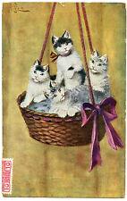 CHATS PANIER  CATS BASKET