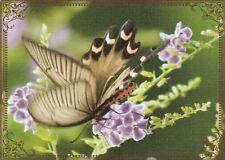Modern-Wide-Linen-Butterflies-P6-Butterfly On Pretty Flowers-Swap Playing Card