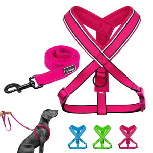 Reflective Dog Harness and Leash Set Mesh Padded for Small Large Dogs Pitbull