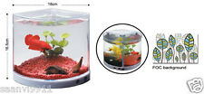 KW Zone Dophin Betta Tank  T-101 - With Attached LED Light & FOC Background
