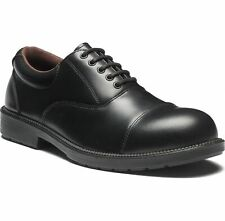 Dickies Oxford Steel Toe-Cap Safety Shoes - Black Sizes 5.5-12 FA12350A