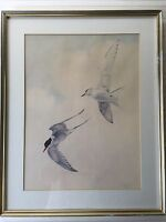 John Pitcher Birds Signed & Numbered Lithograph Print, Framed, 163/850