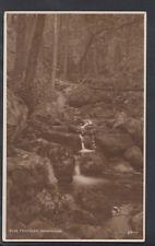 Wales Postcard - Fairy Glen, Dwygyfylchi    RS6359