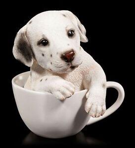 Hunde Figur - Dalmatiner Welpe in Tasse - Baby Tier lustig süß Fun