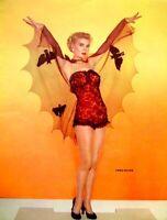 Vera Ellen 1953 Vintage Pinup Litho Virgil Apger Halloween Photo Publicity COA